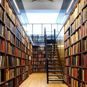 Библиотеки Верхозима